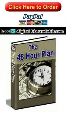 Product picture The 48 Hour Plan