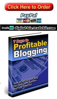 Product picture Profitable Blogging