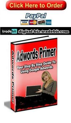 Product picture Adwords Primer