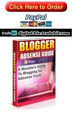 Product picture Blogger Adsense Guide