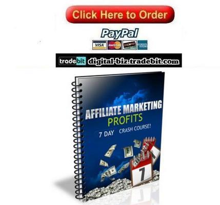 Product picture Affiliate Marketing Profits Crash Course