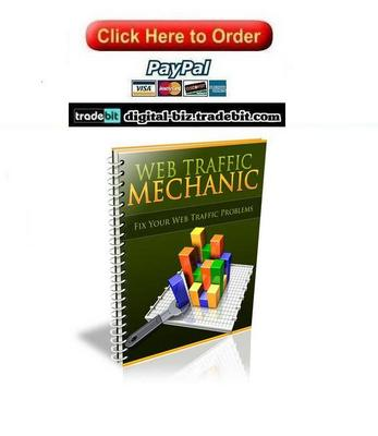 Product picture Web Traffic Mechanic